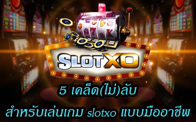 5 เคล็ด(ไม่)ลับสำหรับเล่นเกม slotxo แบบมืออาชีพ